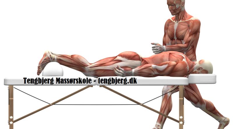 massageskole